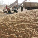строительство зернового хаба, возведение терминала