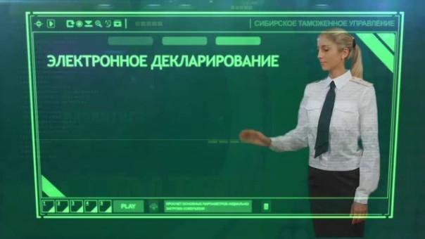 Электронное декларирование доходов в России и США