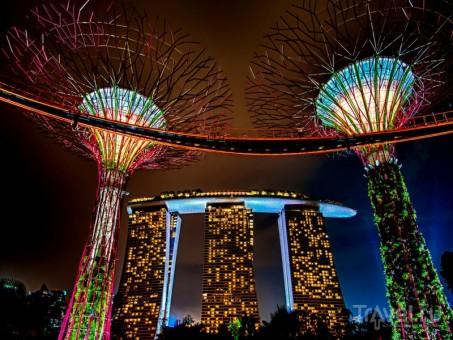 В Сингапуре началась работа по созданию центра налоговых исследований