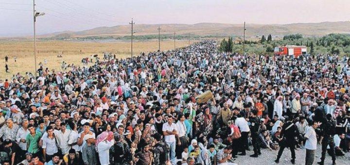 мигранты, беженцы