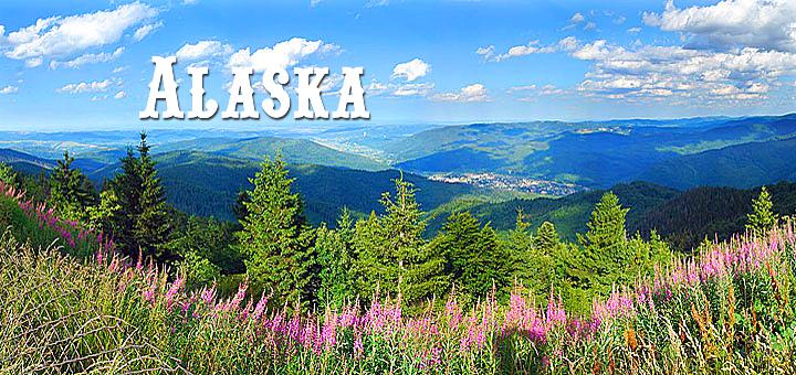 Аляска, налог с продаж