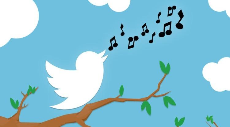 Акции Twitter, пользователи