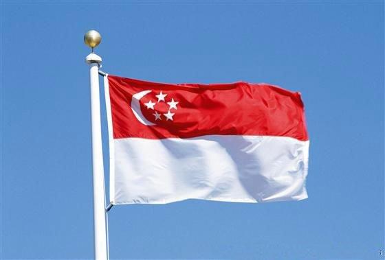 Сингапур, налоговое соглашение