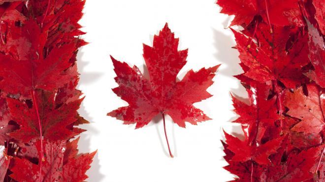 ОЭСР, налоги в Канаде