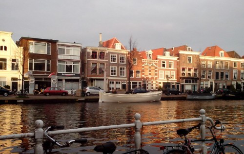 Нидерланды, экспаты, Польша