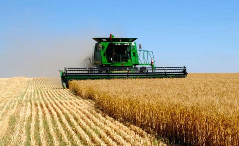 Европарламент, аграрный сектор, сельское хозяйство, спекуляции, Восточная Европа, дотации