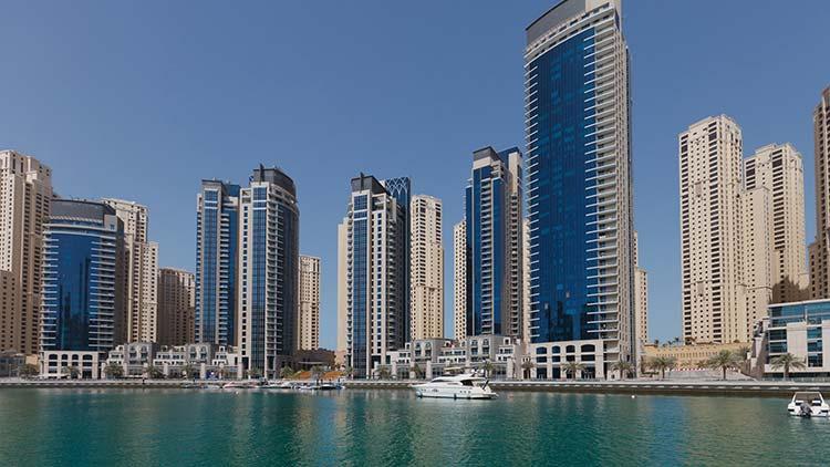 открыть бизнес в ОАЭ, свободная зона, лицензия