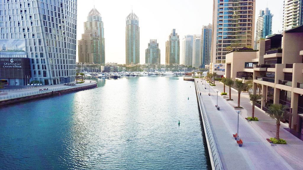 департамент экономики Дубая, лицензия инвестора