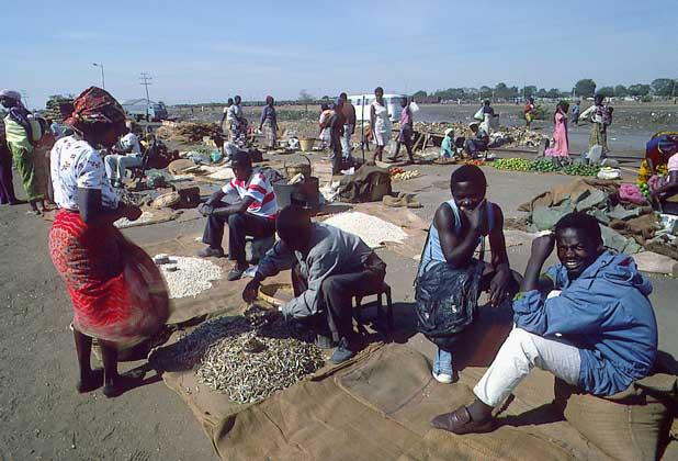 Африка, СПИД, бедность, проект, инфицирование