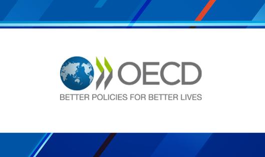 ОЭСР, рост экономики, домашнее хозяйство