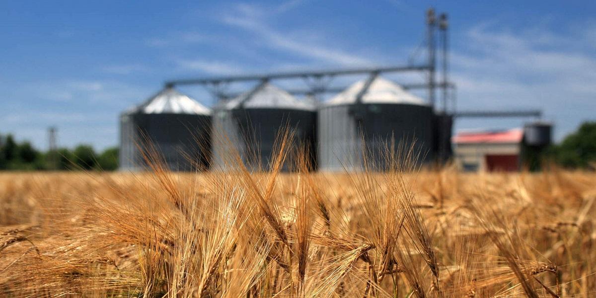 Украина, зерно, экспорт, логистика