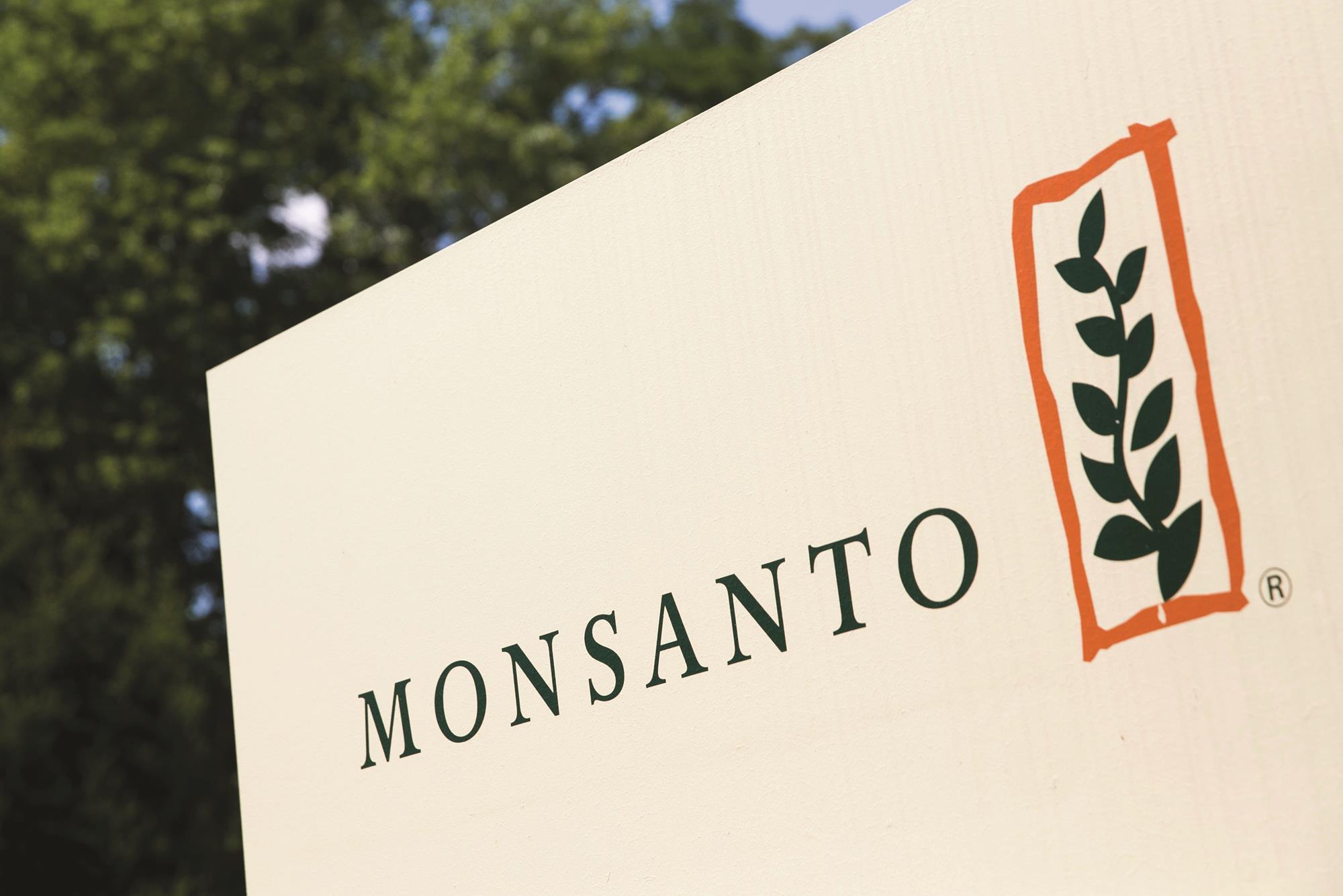 семена хлопчатника, семенная компания, Monsanto, Индия