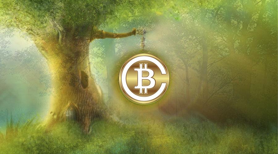 Bitcoin Cash, криптовалюта