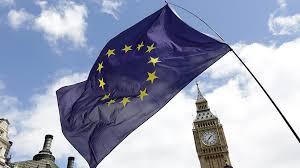 таможенный союз, промышленная группа, Брексит