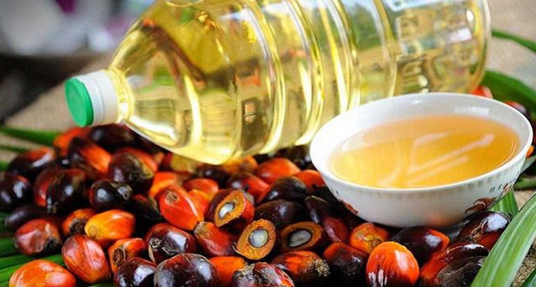 супермаркет, продукты, пальмовое масло, Великобритания
