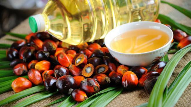 пальмовое масло, экспортный сбор, Малайзия