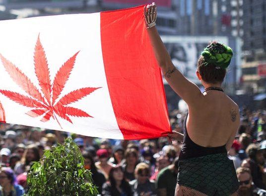 легализация марихуаны, употребление марихуаны, легкие наркотики, премьер министр канады