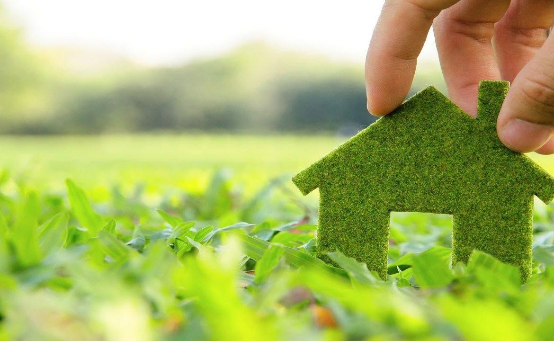 экобизнес, органическая продукция, ЕС, Украина, органика