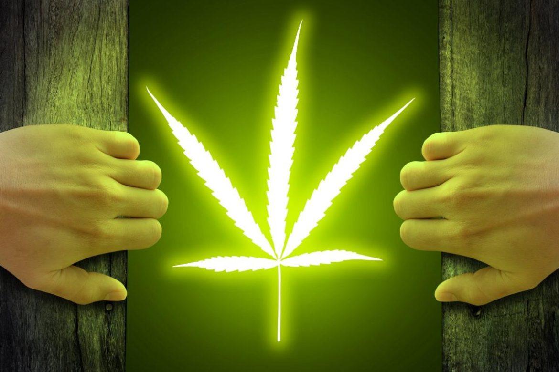 марихуана в медицинских целях, Нью-Джерси