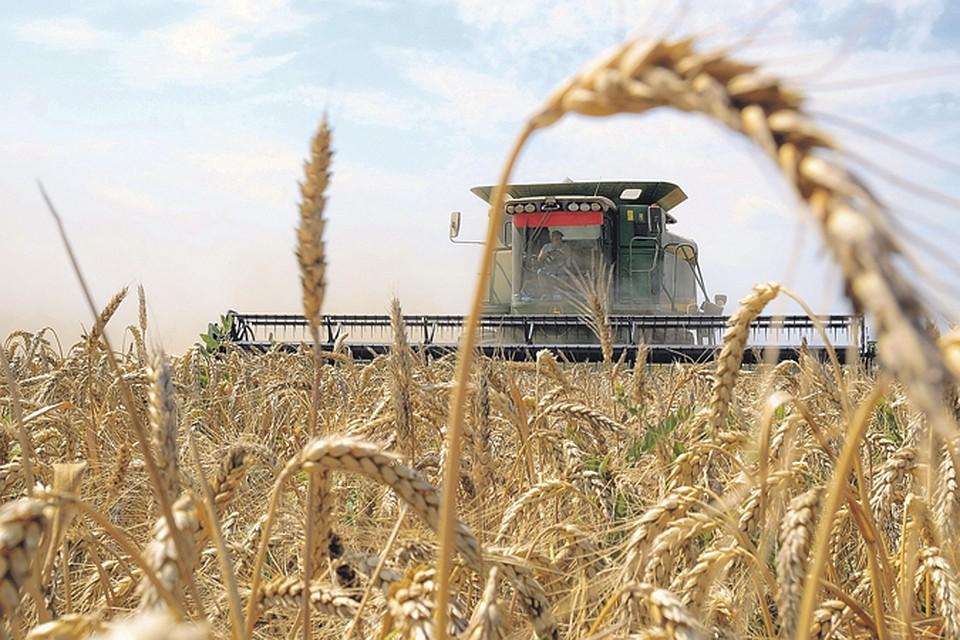 VIII Международная агропромышленная выставка и форум по развитию фермерства