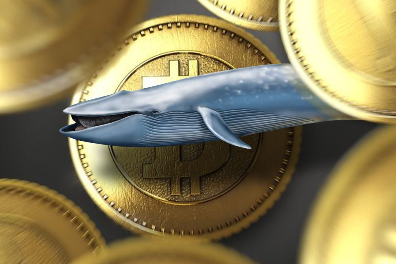 рынок криптовалют, криптовалюта биткоин, цена криптовалют, биткоин киты