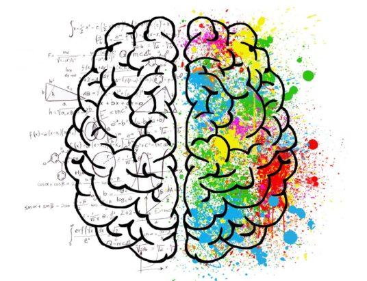 развитие эмоционального интеллекта, вопросы для интеллекта, друзья коллеги