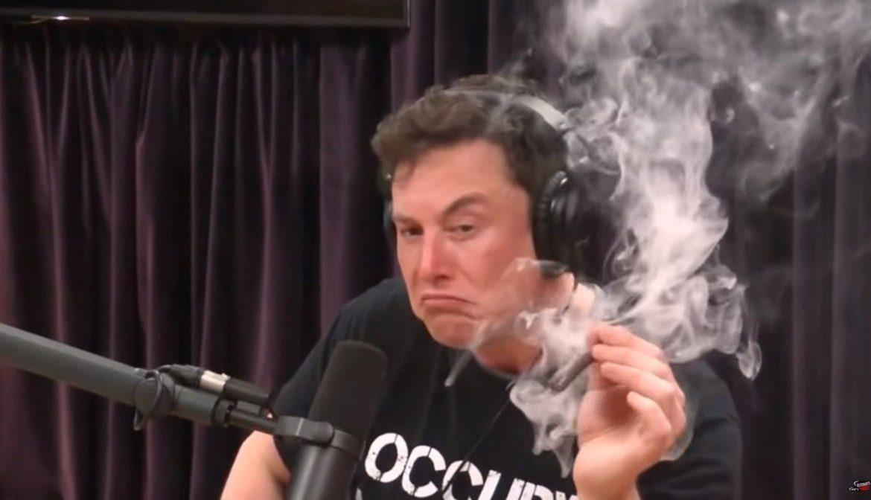 главный бухгалтер, Маск, марихуана