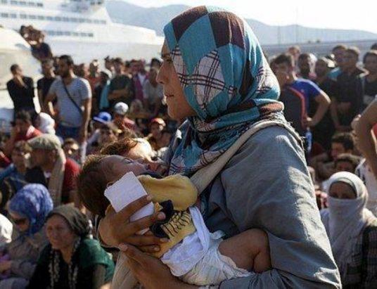 заявление на предоставление убежища, беженцы