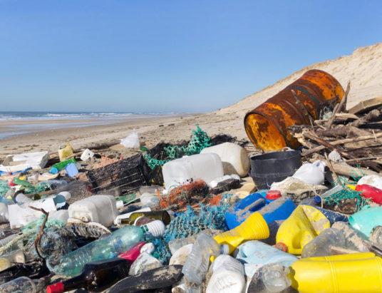 пластиковый мусор, использование пластиковых бутылок, вредные вещества