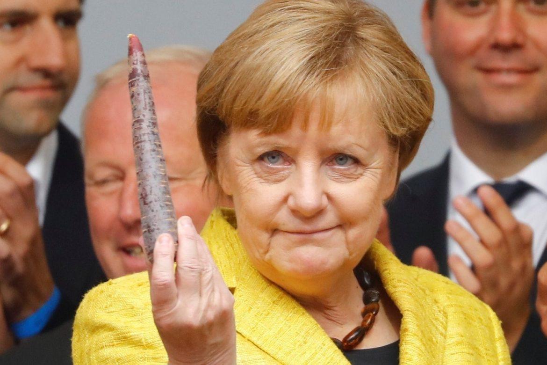 Ангела Меркель, глава государства Германии, кто заменит Меркель