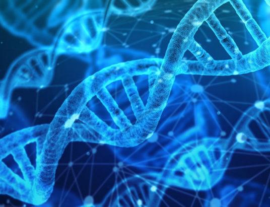 Модифицированные близнецы в Китае | Генетический эксперимент