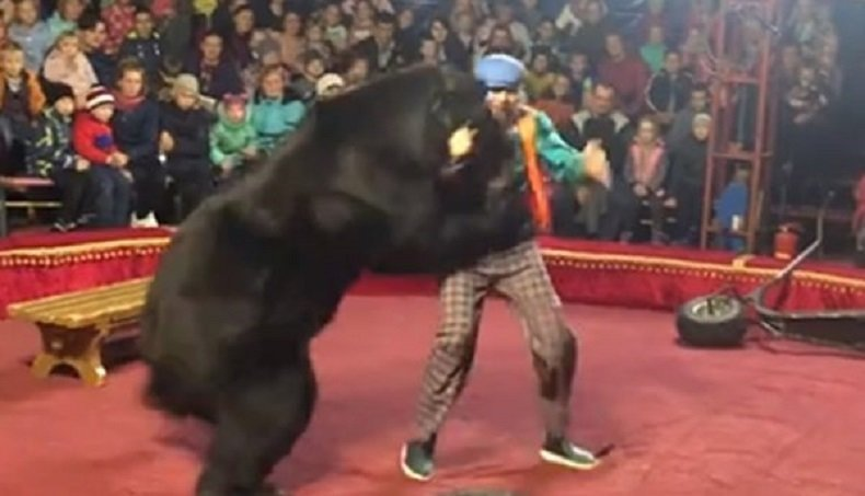 Медведь с дрессировщиком