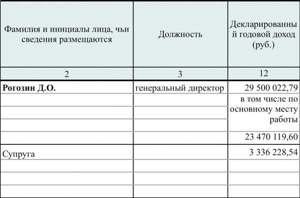 Скриншот из декларации Рогозина