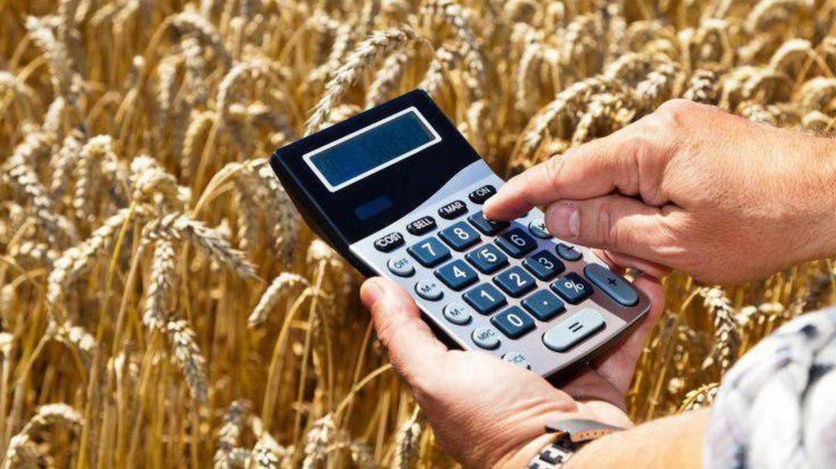 Зерно и калькулятор