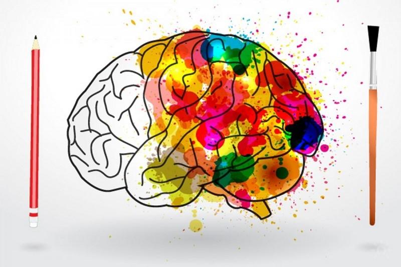воздействие на мозг процесса рисования