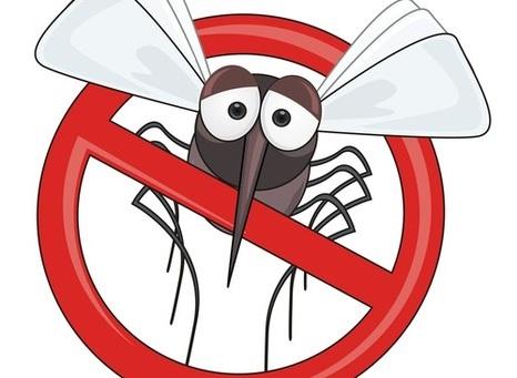 против комаров