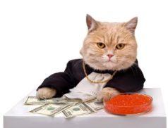кот в золоте, с долларами и икрой