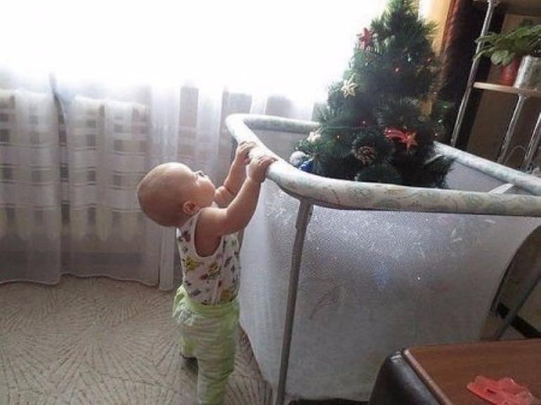 прикол малыш и елка