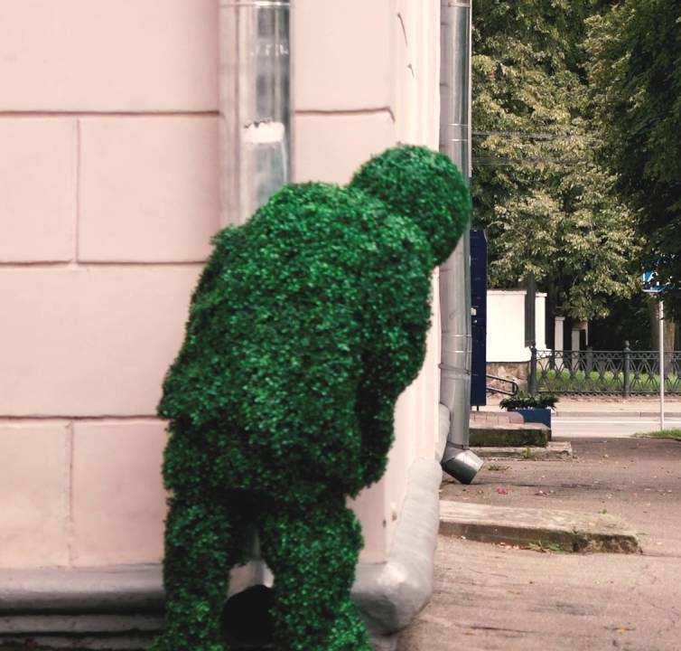 Человек-куст прячется
