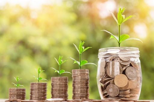 Деньги в стеклянных банках с ростками