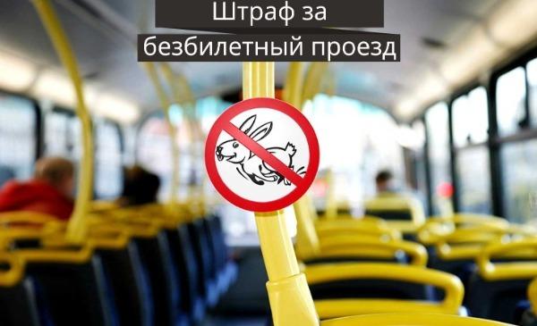 зайцы в общественном транспорте
