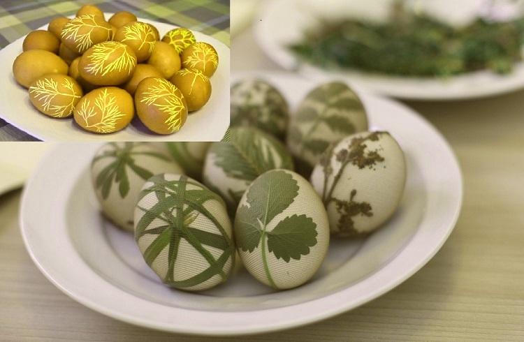 Листочки растений и крашеные яйца