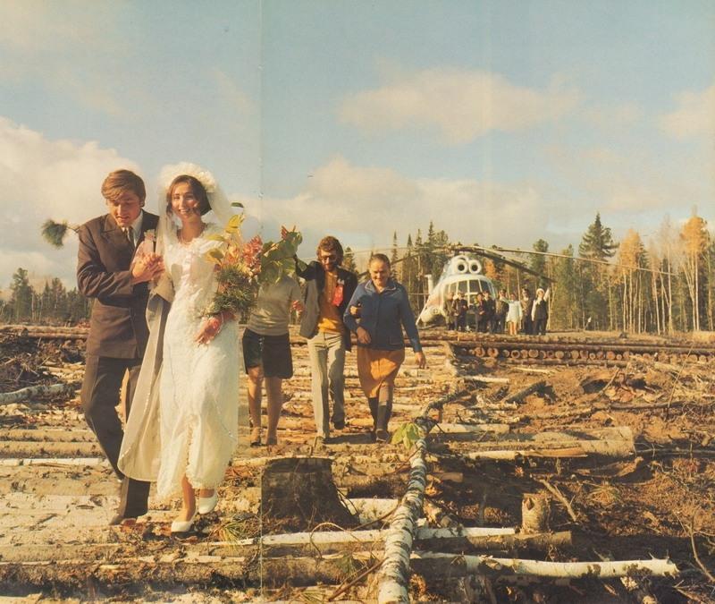 Жених и невеста на лесопилке