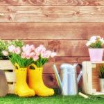 Сапоги, лейка и цветы на даче
