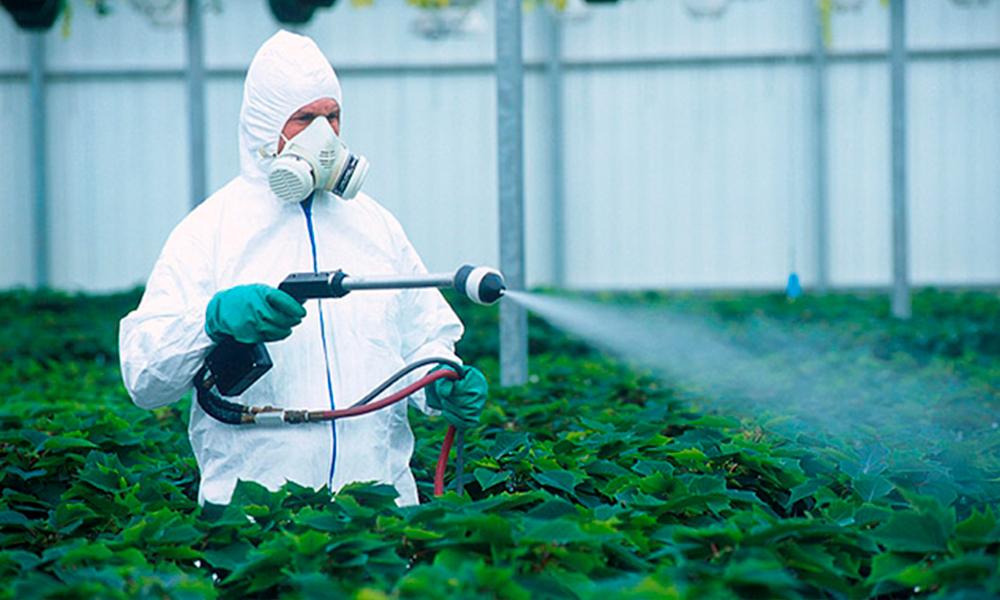 Человек в защитном костюме, перчатках и респираторе производит обработку растений на участке