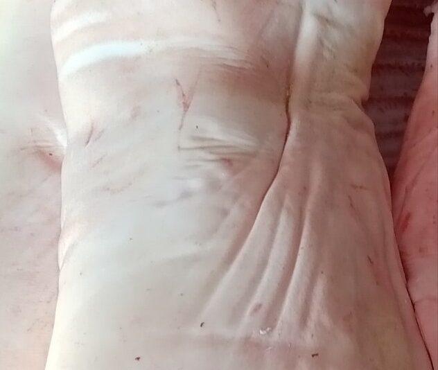 Гладкая и белая шкура свинины