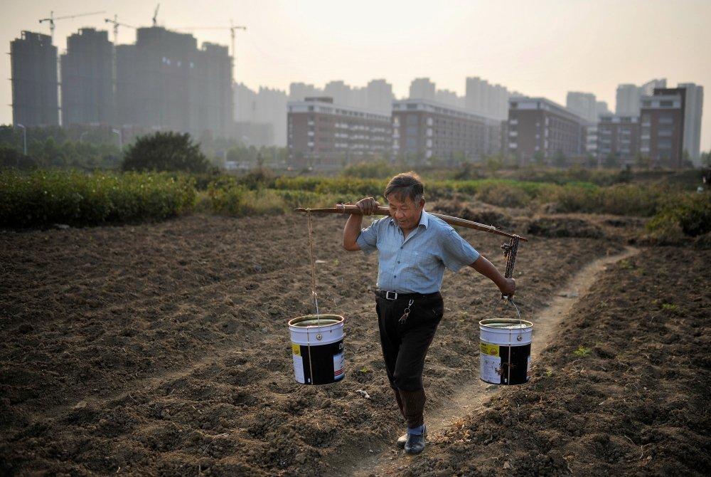 Пожилой китаец несет ведра с водой для полива земельного участка на фоне плотной городской застройки
